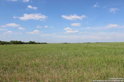 Atascosa County Farm & Ranch New: 22 Acre Tract County Road 101