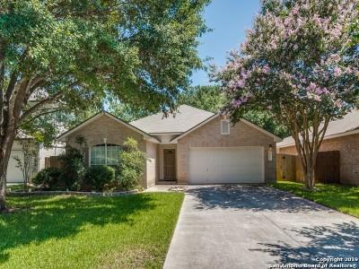 San Antonio Single Family Home New: 15311 Preston Cove Dr