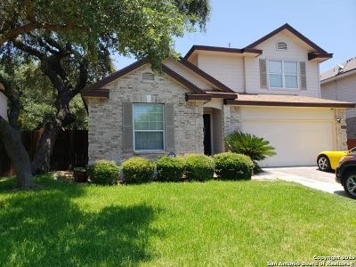 Helotes Single Family Home For Sale: 9707 Lindrith