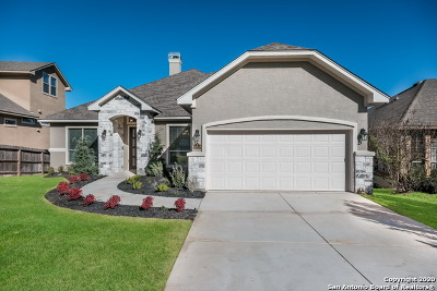 San Antonio Single Family Home New: 25818 Trickling Rock
