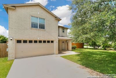 New Braunfels Single Family Home New: 399 Copper Point Dr