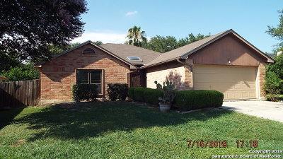 San Antonio Single Family Home New: 5222 Cabin Lake Dr