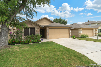 Bexar County Single Family Home New: 534 Snowy Egret