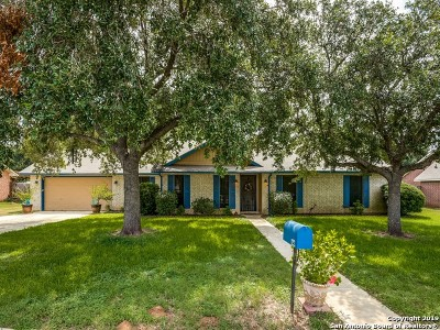 Atascosa County Single Family Home New: 122 Weese Ln