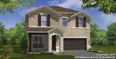 San Antonio Single Family Home New: 12234 Chena Lk