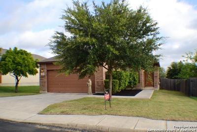 San Antonio Single Family Home New: 11327 Oaks Hike