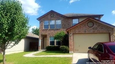 San Antonio Single Family Home New: 9914 Sunview Pass