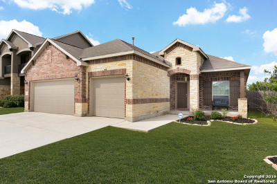 New Braunfels Single Family Home New: 343 Snow Goose