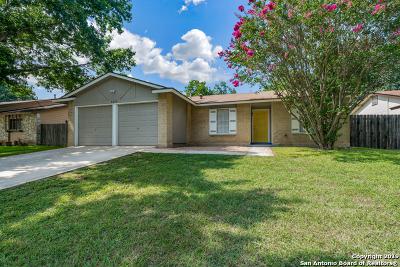 San Antonio Single Family Home New: 9215 Valley Spring