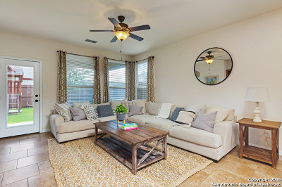 Boerne Single Family Home For Sale: 101 Santa Anita Rd