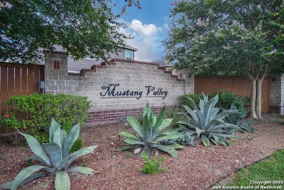 San Antonio Single Family Home New: 4627 Stallion Cove