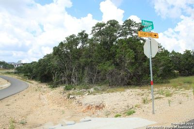 New Braunfels Residential Lots & Land New: 1964 Potenza