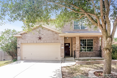 Cibolo Single Family Home New: 333 Moonlight Ct
