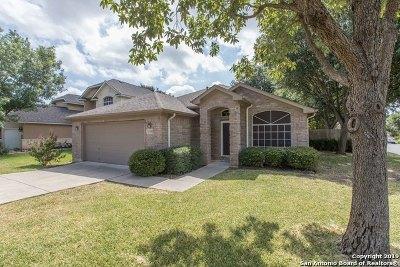 San Antonio Single Family Home New: 2302 Winning Colors
