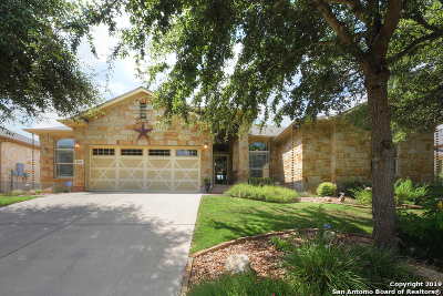 New Braunfels Single Family Home New: 860 San Ignacio
