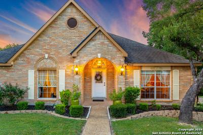 Single Family Home New: 1003 Verde Vista Dr