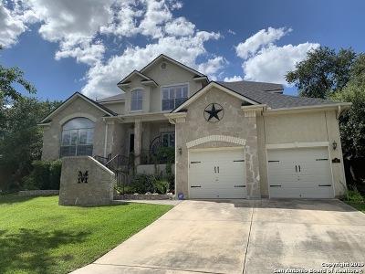 Stone Oak Single Family Home For Sale: 3 Horseshoe Cyn