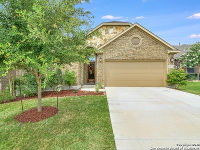 Bexar County Single Family Home New: 5431 Saffron Rose