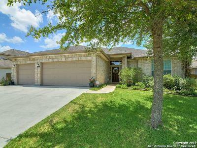 New Braunfels Single Family Home New: 817 Walzem Mission Rd