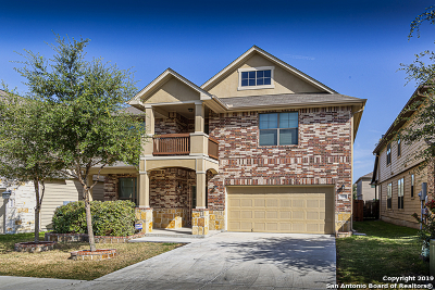 Cibolo Single Family Home For Sale: 224 Dove Hill