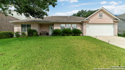 San Antonio Single Family Home New: 21931 Advantage Run