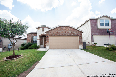 Boerne Single Family Home New: 27207 Paraiso Manor