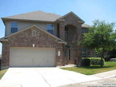 Bexar County Single Family Home New: 24010 Buckthorn Pass