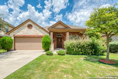 Bexar County Single Family Home New: 3530 Arroyo Alamo