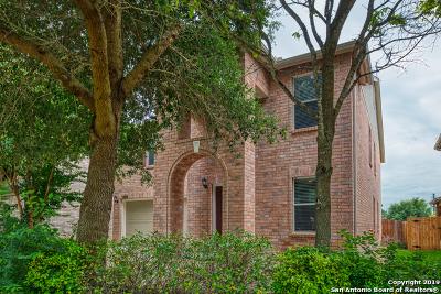 San Antonio Single Family Home New: 13222 Solar Crst