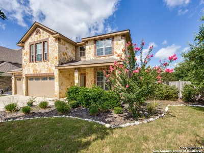 Boerne Single Family Home New: 27035 Hardy Run