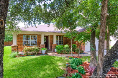San Antonio Single Family Home New: 8411 Braun Path