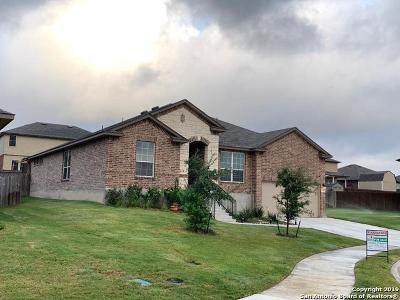 Cibolo Single Family Home For Sale: 225 Boulder View