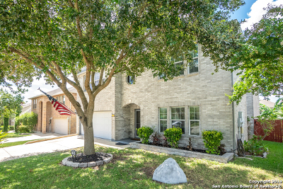 Guadalupe County Single Family Home New: 136 Springtree Hollow
