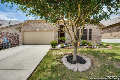 Cibolo Single Family Home For Sale: 809 Laserra