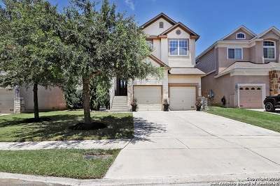 Stone Oak Single Family Home New: 21327 La Pena Dr