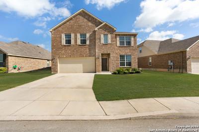 San Antonio Single Family Home New: 12719 Texas Gold