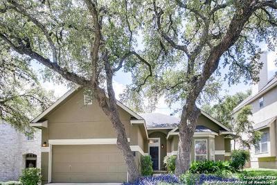 San Antonio Single Family Home New: 115 Osiana Dr