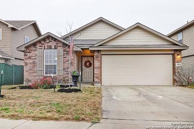 San Antonio Single Family Home New: 3831 Spanish Branch