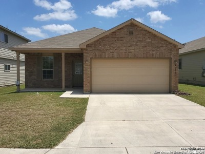 San Antonio Single Family Home New: 4011 Ashleaf Pecan
