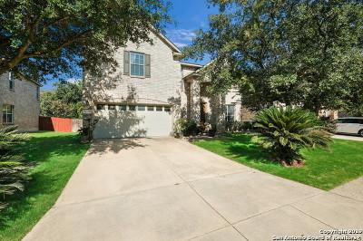San Antonio Single Family Home New: 24802 Cooper Valley