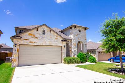 New Braunfels Single Family Home New: 243 Oak Creek Way