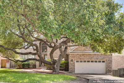 Stone Oak Single Family Home New: 19427 Camino Ridge