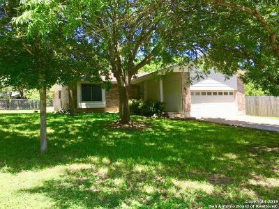 Kerrville Single Family Home New: 203 Oakview Dr
