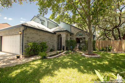 San Antonio Single Family Home New: 8919 Park Vista Dr