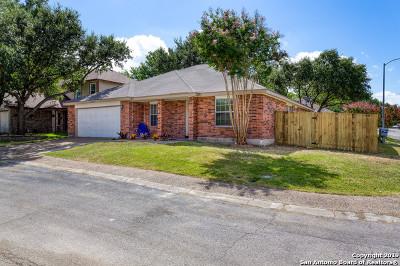 San Antonio Single Family Home New: 12202 Ridge Wine