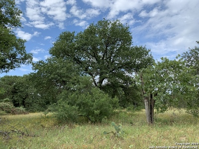 Atascosa County Residential Lots & Land For Sale: 370 Webb Rd