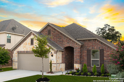 Boerne Single Family Home New: 27403 Cozy Pass