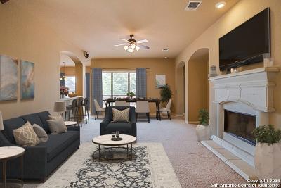 San Antonio Single Family Home New: 13043 Grove Pt