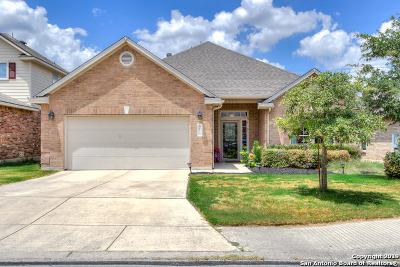 San Antonio Single Family Home New: 8115 Rockwell Vista