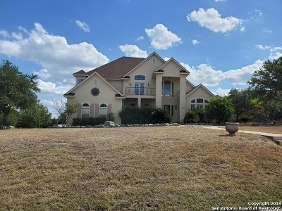 San Antonio Single Family Home For Sale: 1724 Winding View